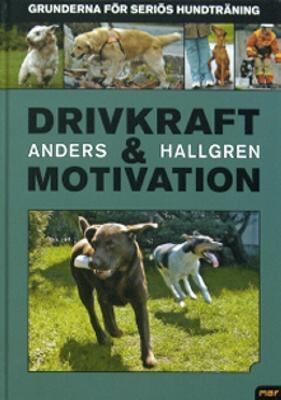 Drivkraft och motivation